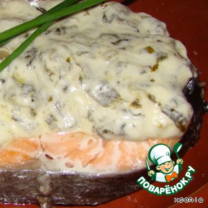 Salmon with sauce of sorrel