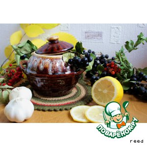 Рецепт: Говядина в соусе из черноплодной рябины