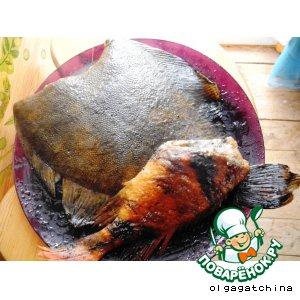 Рецепт: Копченая камбала, морской окунь