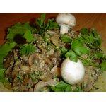 Жареные грибы с орехами