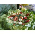 Летний салат Цветное настроение