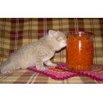 Варенье из молодой моркови Витаминка