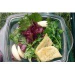 Четыре салата с сырными чипсами