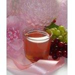 Клюквенно-виноградный компот Вкус настроения