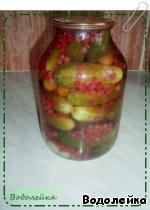 Огурцы с красной смородиной ингредиенты