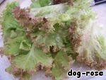 Салат Зеленый гребень ингредиенты