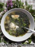 """Этот суп можно есть и горячим и холодным - что называется, """"на любителя"""" и в зависимости от погодных условий. У нас жарко, поэтому мы ели его холодным. Разливаем супец по тарелкам, кладём петрушечку, четвертинку яйца и немножко сметаны. И заряжаемся витаминами. Конечно, их могло бы быть больше, если бы ВСЁ было свежее, но извиняйте, пока ещё не выросло... : ( Украшаю специально для Вас картинку цветами из сада и желаю всем весеннего и праздничного настроения, такого же как у меня."""