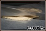 5. Put the dough between 2 sheets of baking paper and roll out with a rolling pin to a diameter of 15 cm and leave in refrigerator for 20 minutes.