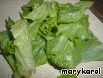 Lettuce cut into strips slightly wider than aubergine records