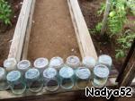 Теперь надо приготовить банки. Выходим в огород, банки стерилизуются на солнышке на заборе. Их ополаскиваем чистой водой и ставим обсохнуть.