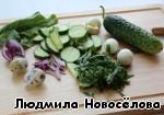 Сделаем легкий салат. Нарубим зелень кольраби, петрушки, нарежем красную луковицу, огурец, добавим вареное яйцо, приправим солью, перцем. Сдобрим заправкой из лимонного сока, оливкового/раститель ного масла