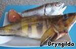 Рыбу разделим пополам. Часть для бульона, часть для запекания.
