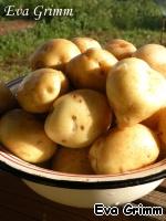 Подготовим картошечку, хорошо промоем, не чистим.